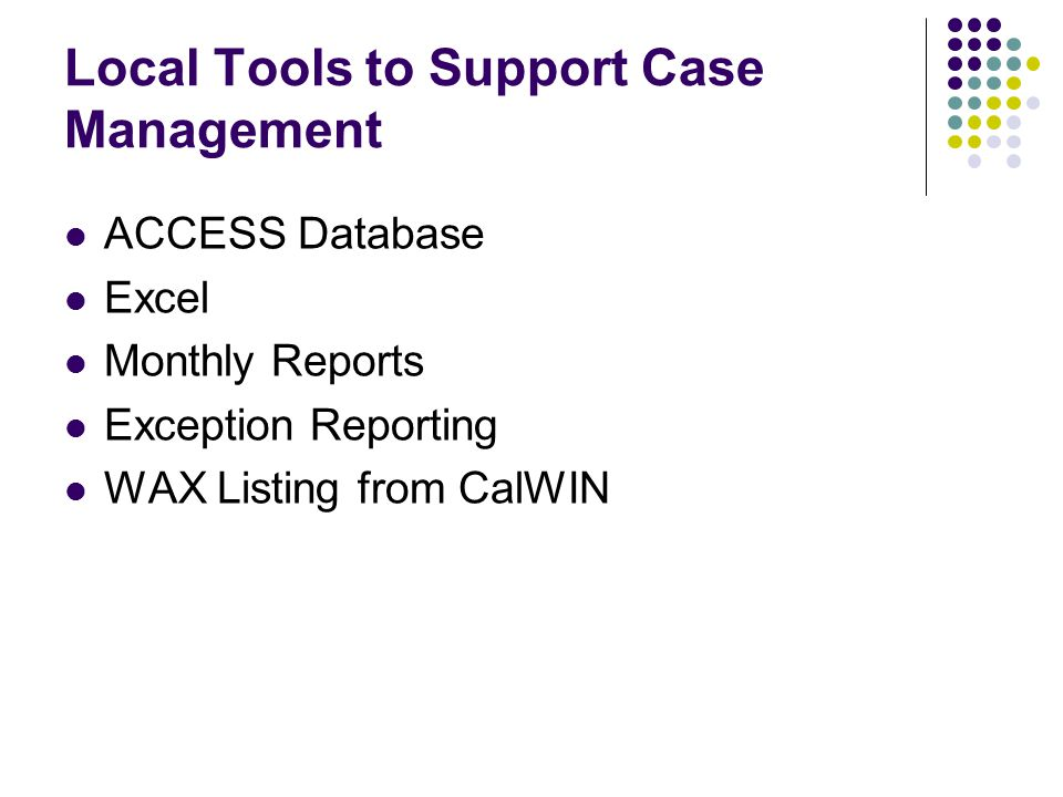 Local Tools to Support Case Management ACCESS Database Excel Monthly Reports Exception Reporting WAX Listing from CalWIN