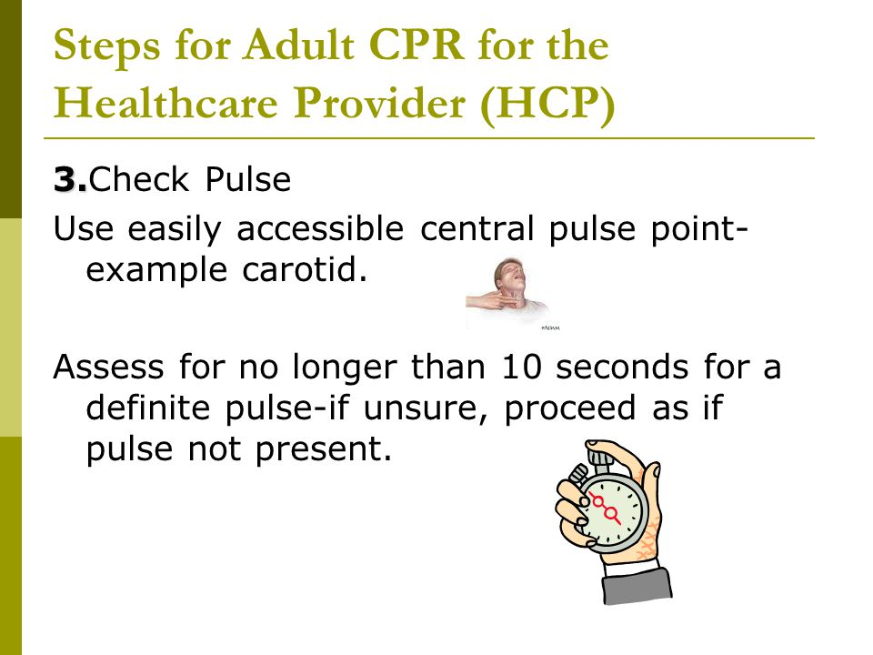 Steps for Adult CPR for the Healthcare Provider (HCP) 3. 3.Check Pulse Use easily accessible central pulse point- example carotid. Assess for no longe