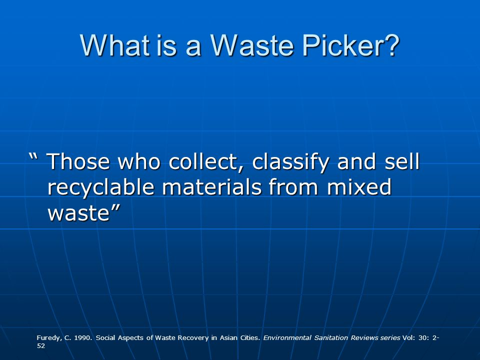 What is a Waste Picker.