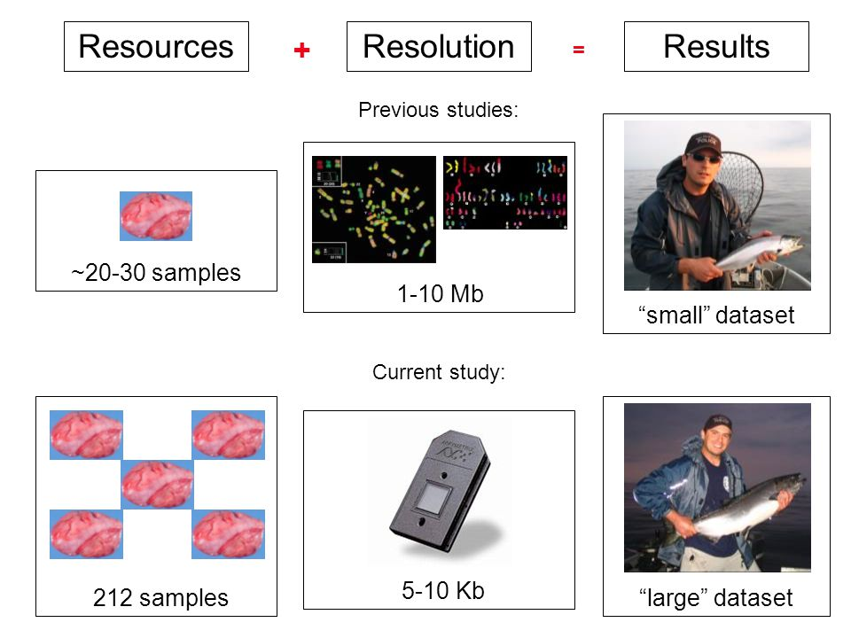 ResourcesResolutionResults 1-10 Mb 5-10 Kb small dataset large dataset ~20-30 samples 212 samples Previous studies: Current study:  =