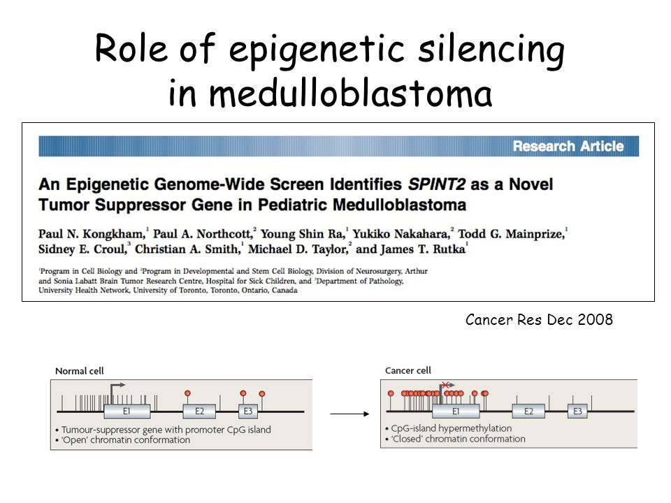 Role of epigenetic silencing in medulloblastoma Cancer Res Dec 2008