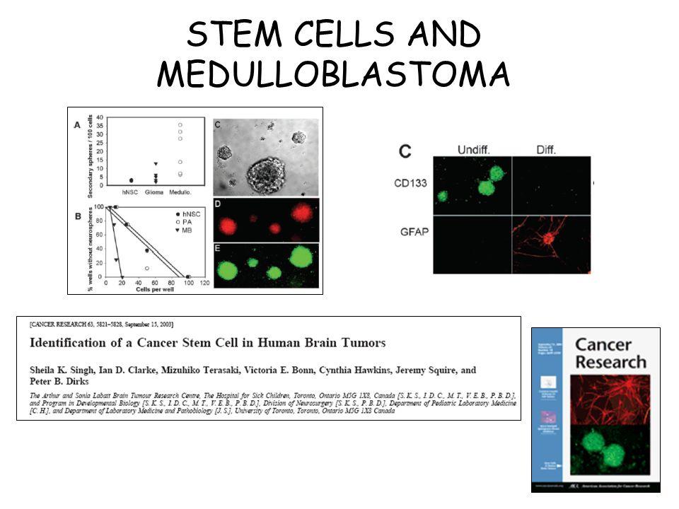 STEM CELLS AND MEDULLOBLASTOMA