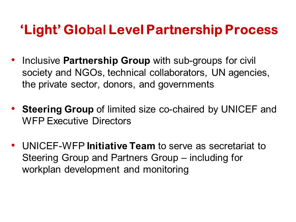 'Light' Global Level Partnership Process Inclusive Partnership Group with sub-groups for civil society and NGOs, technical collaborators, UN agencies,