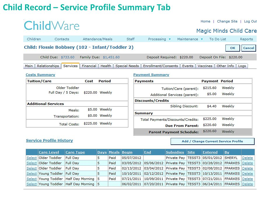 Child Record – Service Profile Summary Tab