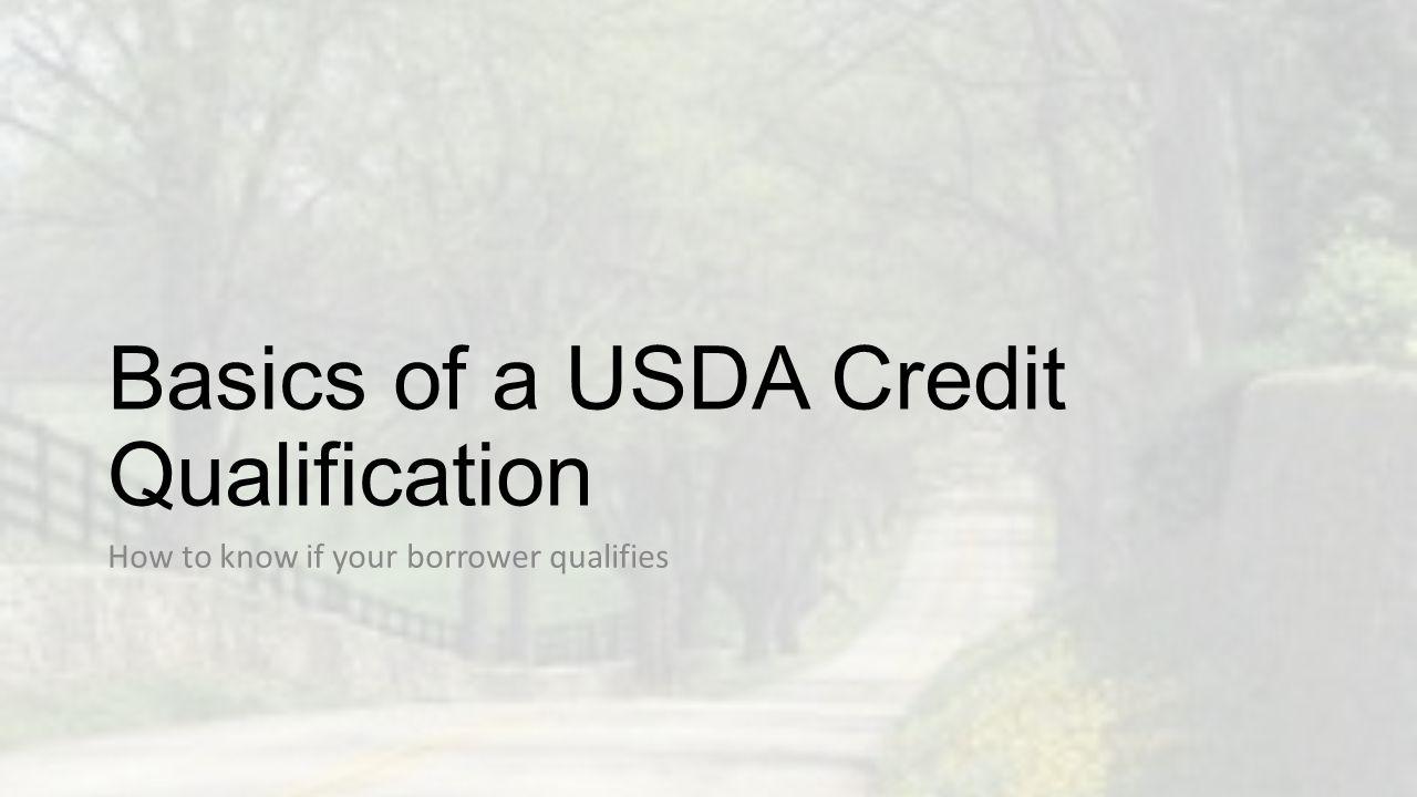 Application Verification Validating the 1003 information