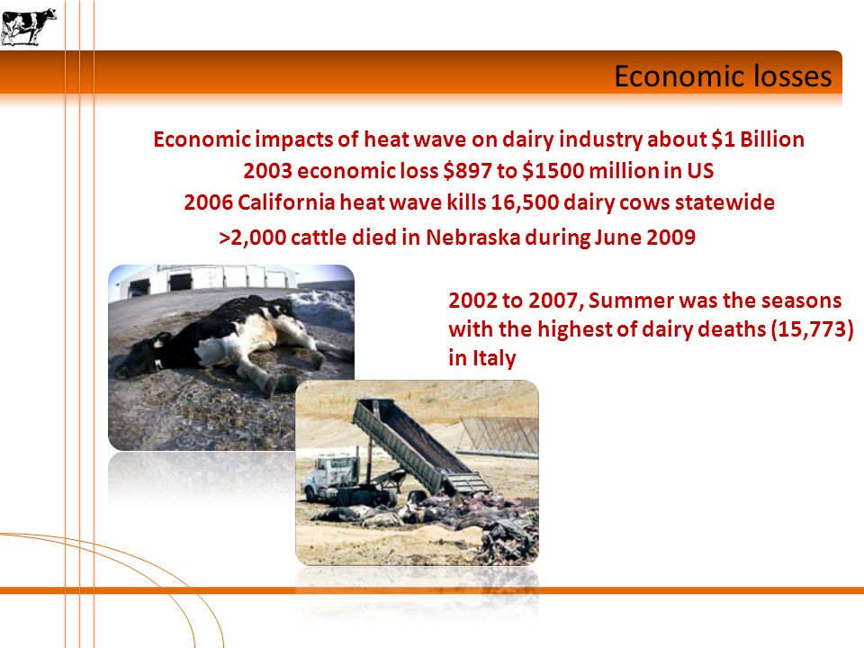 Conclusions Global Change / Heat Stress Temp. THI Moderate Heat Stress Severe Heat Stress