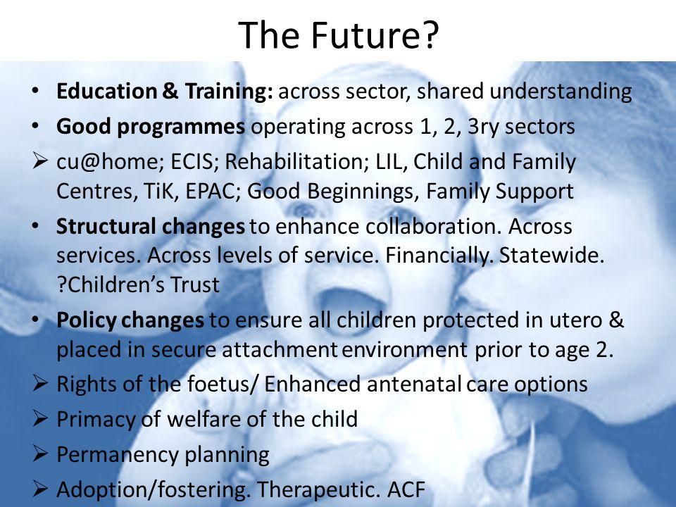 The Future? Education & Training: across sector, shared understanding Good programmes operating across 1, 2, 3ry sectors  cu@home; ECIS; Rehabilitati