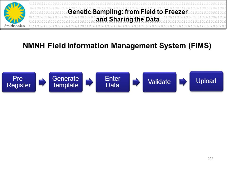 Pre- Register Generate Template Enter Data ValidateUpload NMNH Field Information Management System (FIMS) 27 Genetic Sampling: from Field to Freezer and Sharing the Data