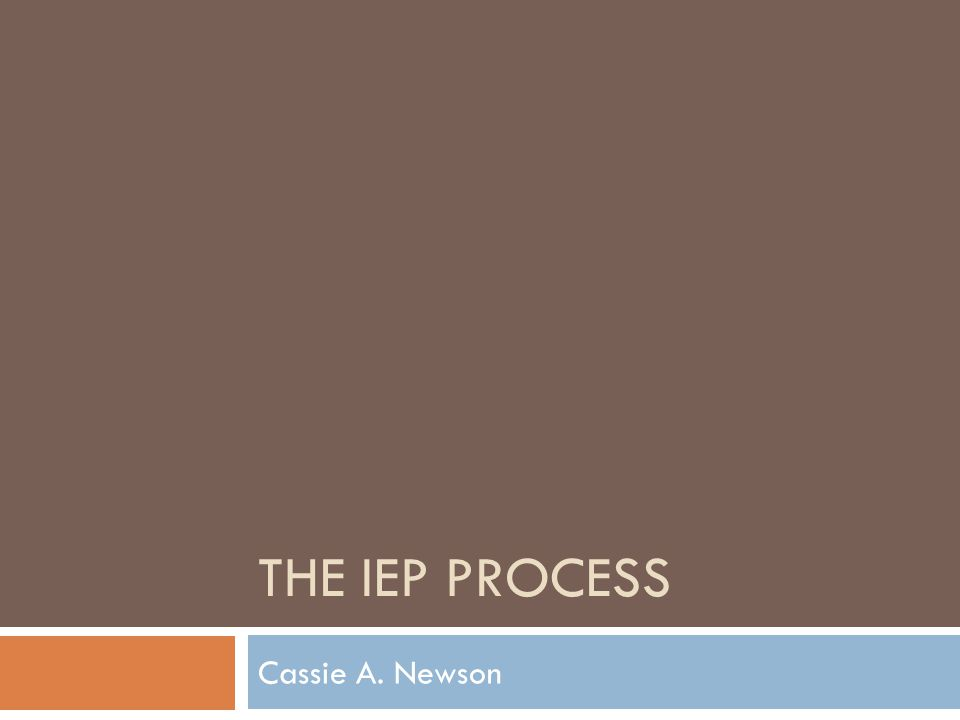 THE IEP PROCESS Cassie A. Newson