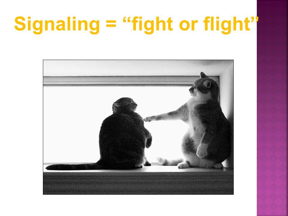 "Signaling = ""fight or flight"""