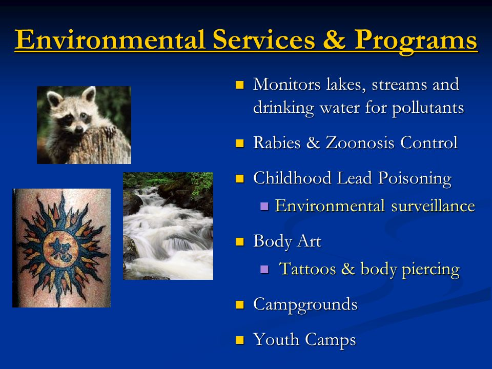 Environmental Services & Programs Monitors lakes, streams and drinking water for pollutants Monitors lakes, streams and drinking water for pollutants Rabies & Zoonosis Control Rabies & Zoonosis Control Childhood Lead Poisoning Childhood Lead Poisoning Environmental surveillance Environmental surveillance Body Art Body Art Tattoos & body piercing Tattoos & body piercing Campgrounds Campgrounds Youth Camps Youth Camps