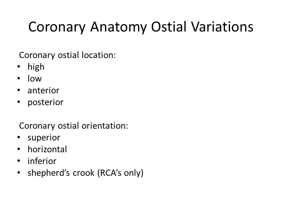 Coronary Anatomy Ostial Variations Coronary ostial location: high low anterior posterior Coronary ostial orientation: superior horizontal inferior she