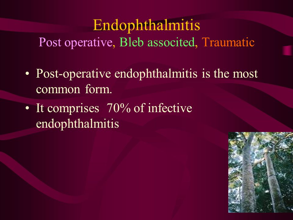 Endophthalmitis Post operative, Bleb associted, Traumatic Post-operative endophthalmitis is the most common form. It comprises 70% of infective endoph