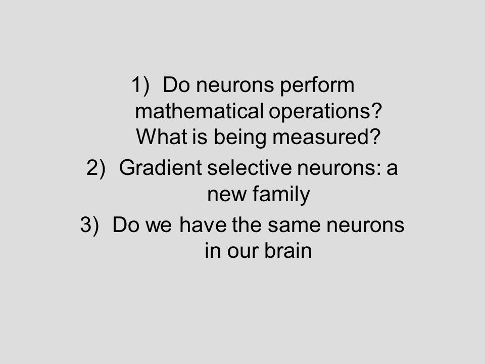1)Do neurons perform mathematical operations? What is being measured? 2)Gradient selective neurons: a new family 3)Do we have the same neurons in our