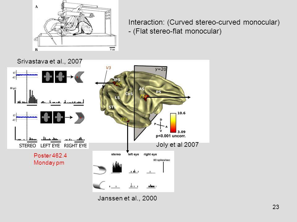 23 Srivastava et al., 2007 Janssen et al., 2000 Interaction: (Curved stereo-curved monocular) - (Flat stereo-flat monocular) Joly et al 2007 Poster 462.4 Monday pm