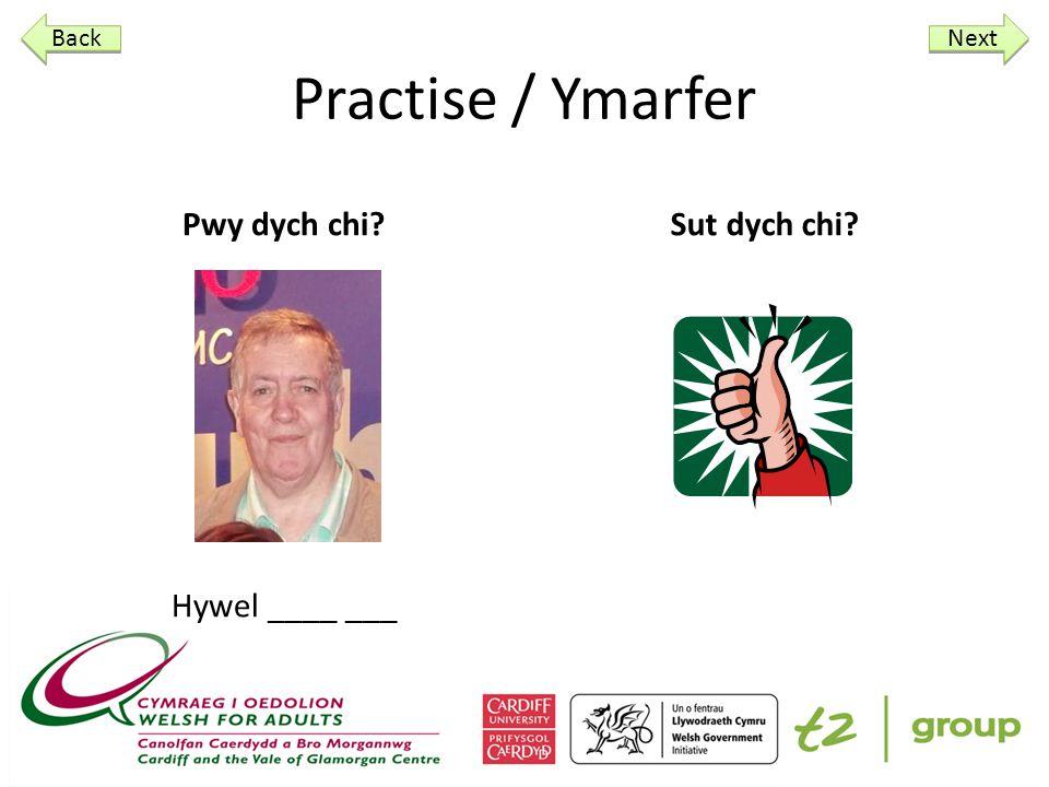 Practise / Ymarfer Pwy dych chi Brychan____ ___ Sut dych chi Next Back