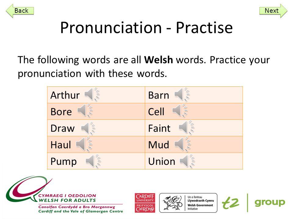 Practise / Ymarfer Pwy dych chi? Hywel ____ ___ Sut dych chi? Next Back