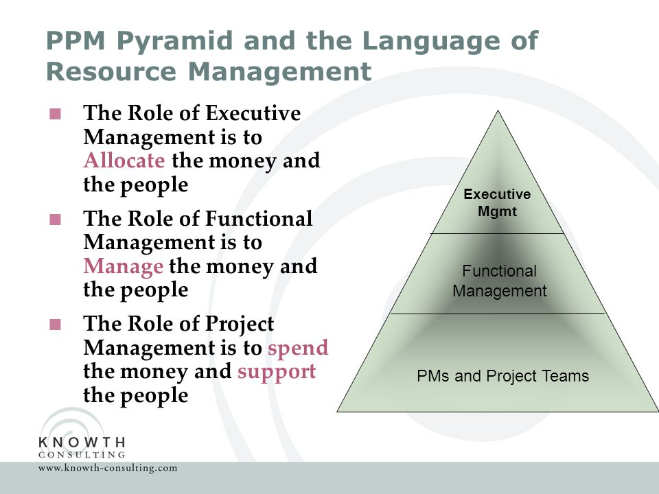 PPM Pyramid and the Language of Resource Management  The Role of Executive Management is to Allocate the money and the people  The Role of Functional Management is to Manage the money and the people  The Role of Project Management is to spend the money and support the people PMs and Project Teams Functional Management Executive Mgmt