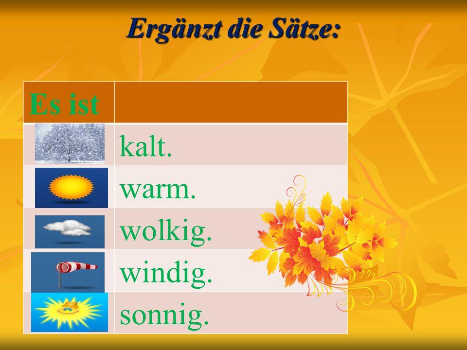 Ergänzt die Sätze: Es ist kalt. warm. wolkig. windig. sonnig.