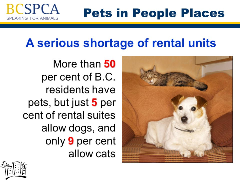 SPEAKING FOR ANIMALS A serious shortage of rental units 50 5 9 More than 50 per cent of B.C.