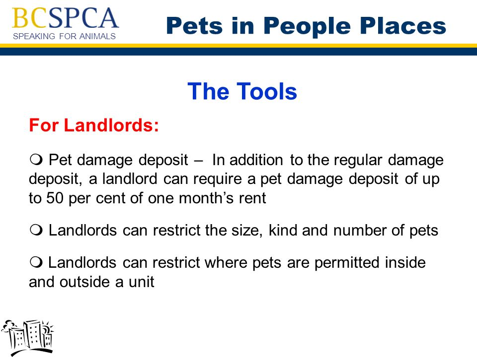 SPEAKING FOR ANIMALS The Tools For Landlords:  Pet damage deposit – In addition to the regular damage deposit, a landlord can require a pet damage de