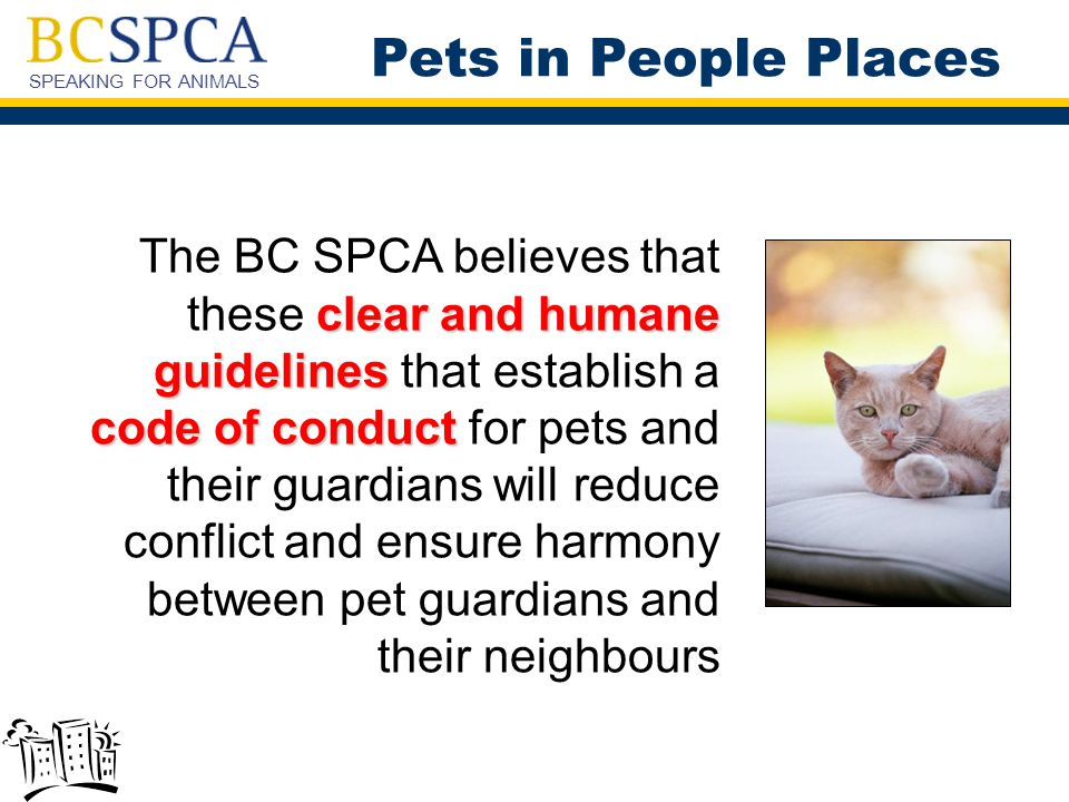 SPEAKING FOR ANIMALS clear and humane guidelines code of conduct The BC SPCA believes that these clear and humane guidelines that establish a code of conduct for pets and their guardians will reduce conflict and ensure harmony between pet guardians and their neighbours Pets in People Places