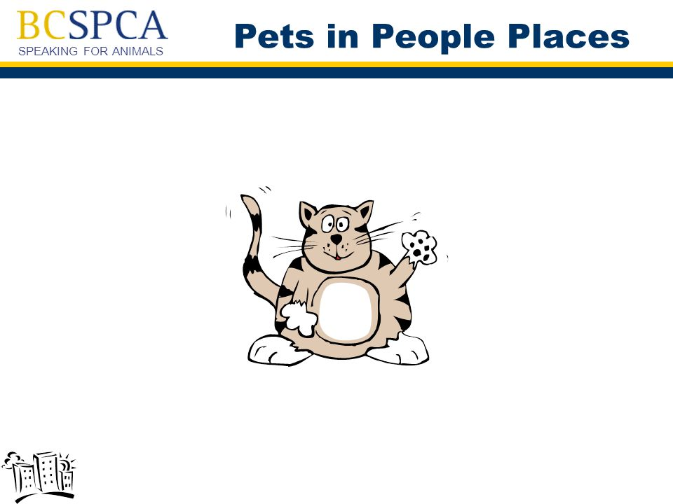 SPEAKING FOR ANIMALS Pets in People Places