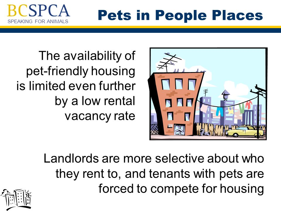 SPEAKING FOR ANIMALS  Tenants should provide the landlord with proof of pet's spay/neuter, and any certificates of pet's obedience training  Tenants should invite a prospective landlord to meet their well-behaved pet  Tenants should indicate their willingness to respect the wishes of people who are fearful of or allergic to animals Pets in People Places