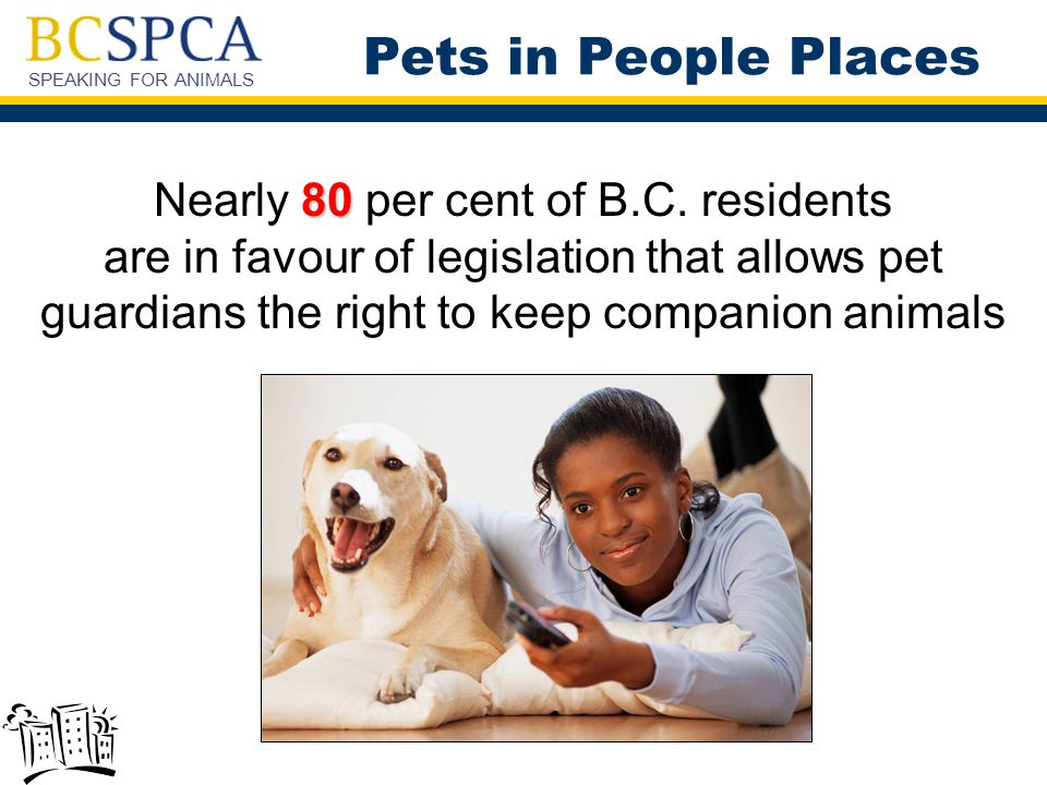 SPEAKING FOR ANIMALS 80 Nearly 80 per cent of B.C.