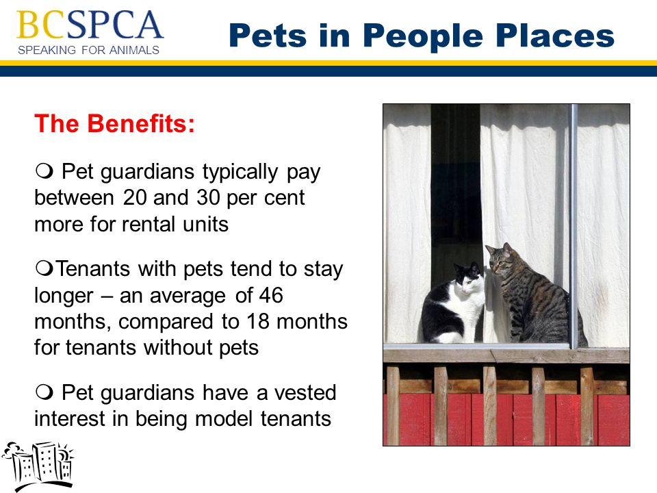 SPEAKING FOR ANIMALS The Benefits:  Pet guardians typically pay between 20 and 30 per cent more for rental units  Tenants with pets tend to stay longer – an average of 46 months, compared to 18 months for tenants without pets  Pet guardians have a vested interest in being model tenants Pets in People Places