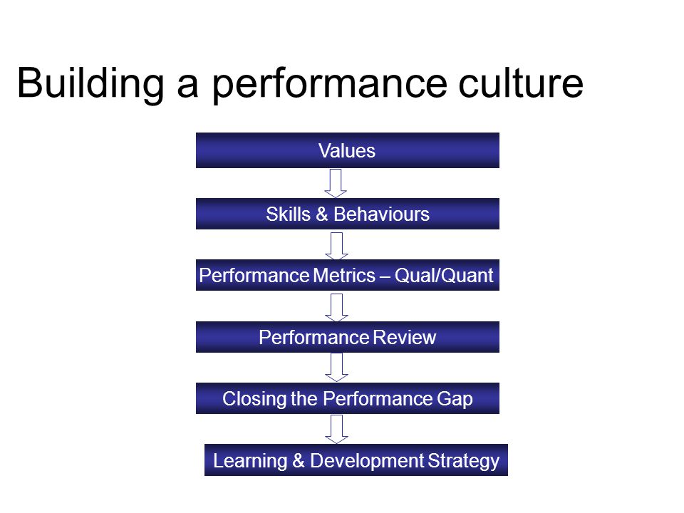 Values Skills & Behaviours Performance Metrics – Qual/Quant Performance Review Closing the Performance Gap Learning & Development Strategy Building a performance culture
