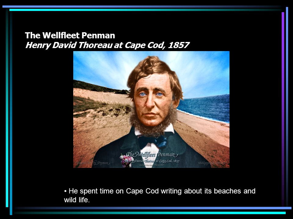 The Wellfleet Penman Henry David Thoreau at Cape Cod, 1857 He spent time on Cape Cod writing about its beaches and wild life.