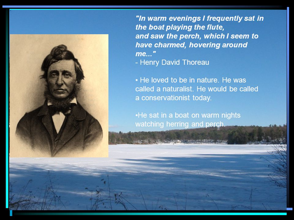 In warm evenings I frequently sat in the boat playing the flute, and saw the perch, which I seem to have charmed, hovering around me... - Henry David Thoreau He loved to be in nature.