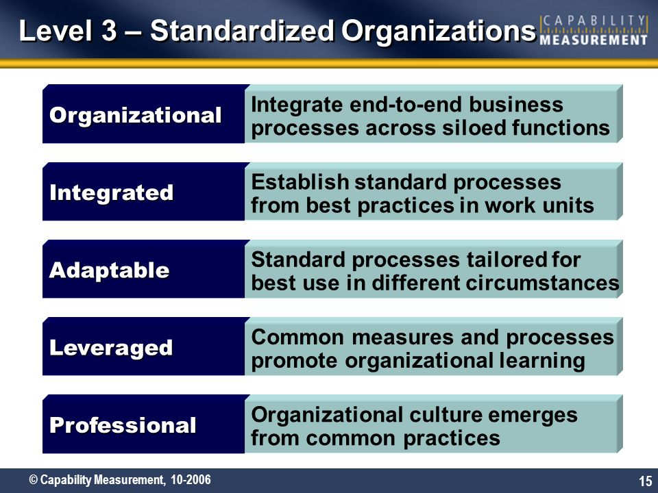 © Capability Measurement, 10-2006 15 Level 3 – Standardized Organizations Adaptable Standard processes tailored for best use in different circumstance