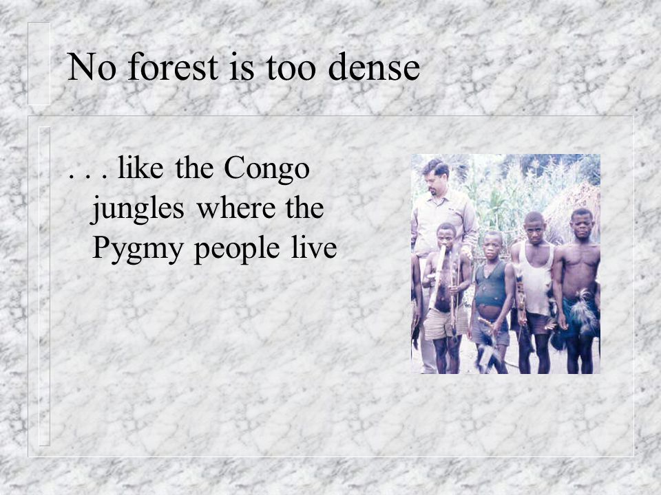 No forest is too dense... like the Congo jungles where the Pygmy people live
