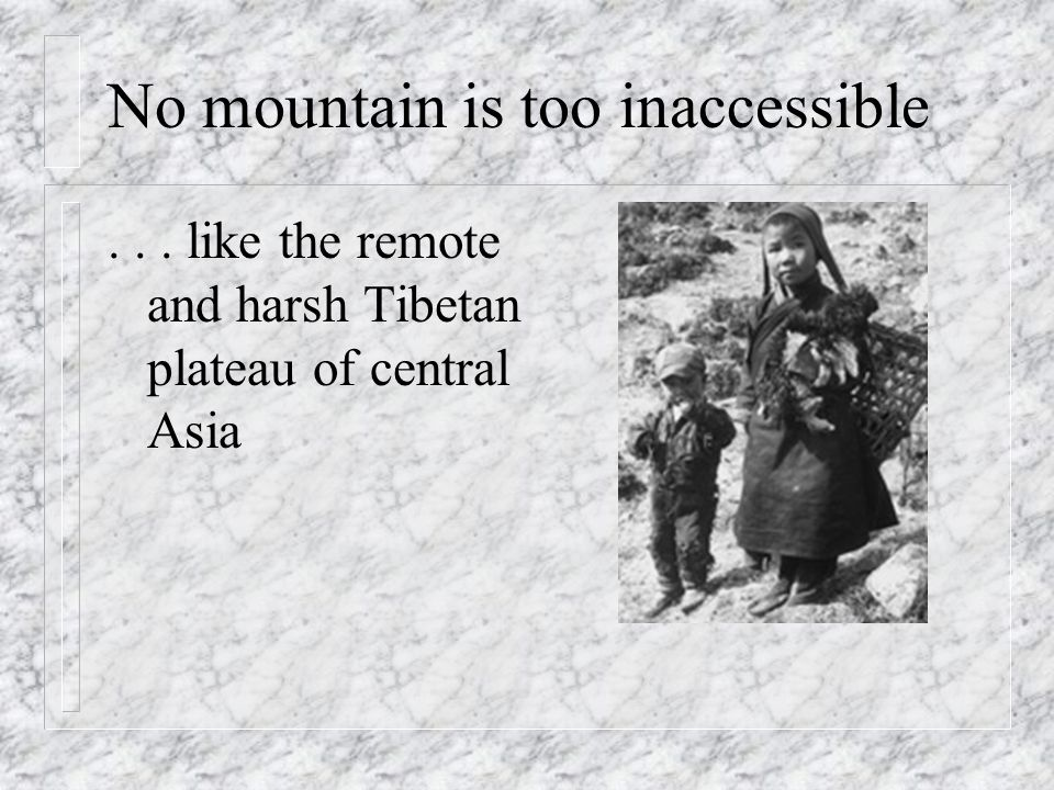No mountain is too inaccessible... like the remote and harsh Tibetan plateau of central Asia