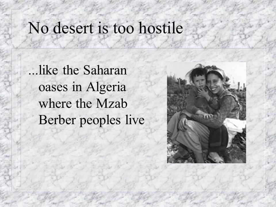 No desert is too hostile...like the Saharan oases in Algeria where the Mzab Berber peoples live