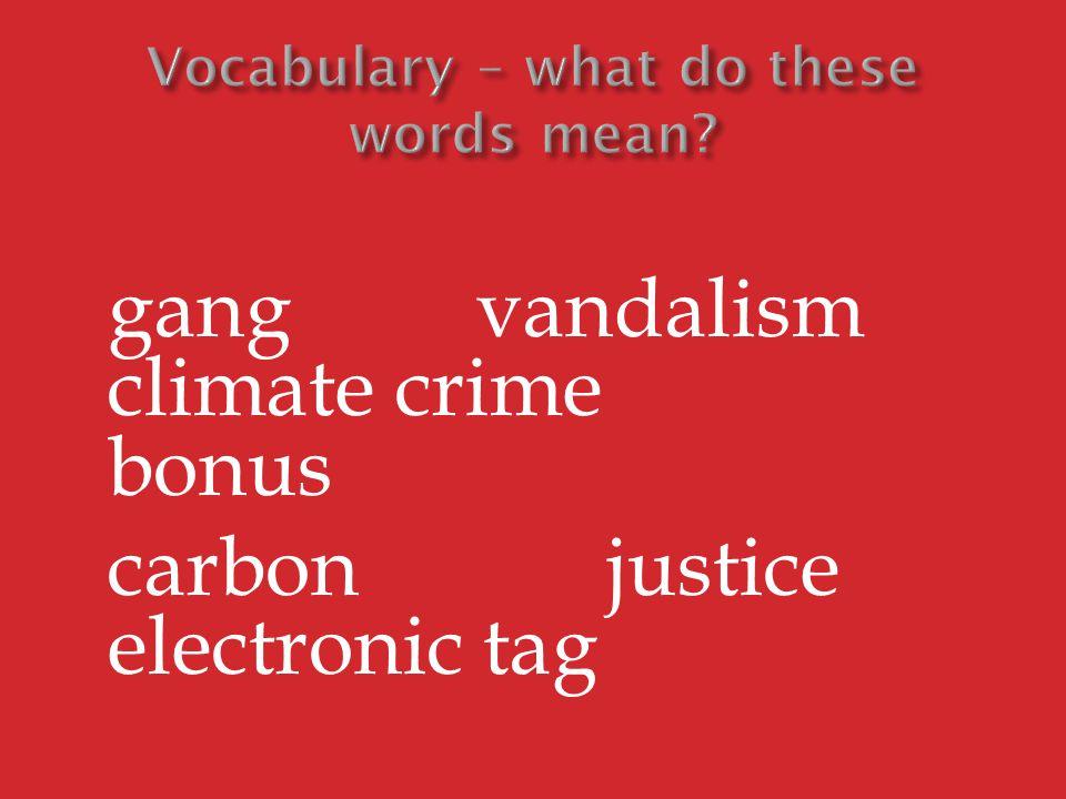 gang vandalism climate crime bonus carbon justice electronic tag