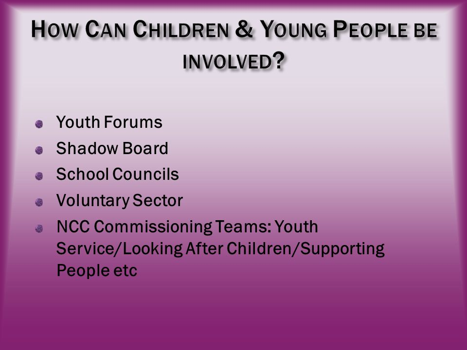 Youth Forums Shadow Board School Councils Voluntary Sector NCC Commissioning Teams: Youth Service/Looking After Children/Supporting People etc