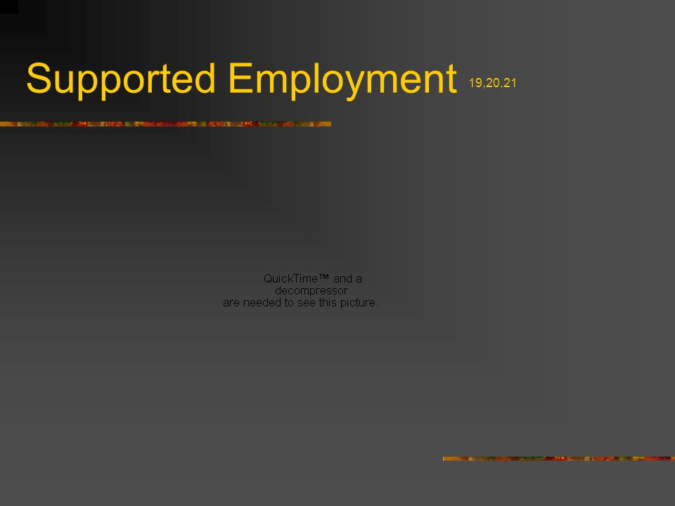 Supported Employment 19,20,21