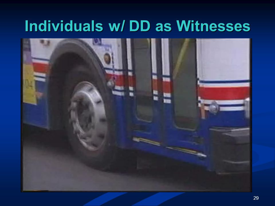 29 Individuals w/ DD as Witnesses