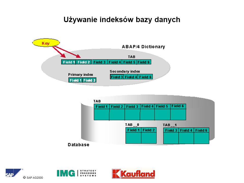  SAP AG2000 Używanie indeksów bazy danych