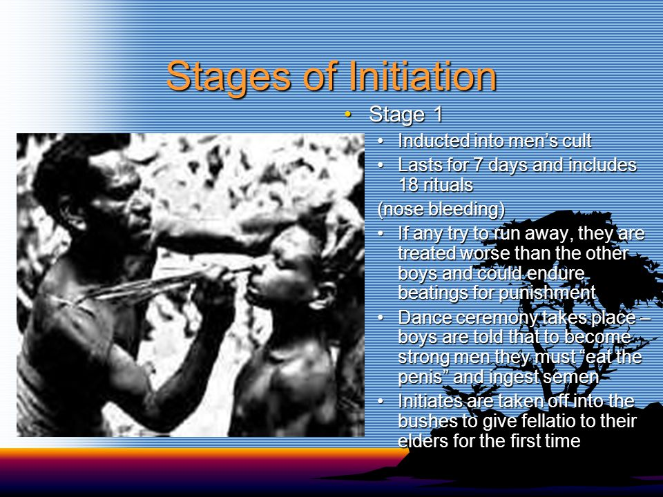 Stages of Initiation Stage 1Stage 1 Inducted into men's cultInducted into men's cult Lasts for 7 days and includes 18 ritualsLasts for 7 days and includes 18 rituals (nose bleeding) If any try to run away, they are treated worse than the other boys and could endure beatings for punishmentIf any try to run away, they are treated worse than the other boys and could endure beatings for punishment Dance ceremony takes place – boys are told that to become strong men they must eat the penis and ingest semenDance ceremony takes place – boys are told that to become strong men they must eat the penis and ingest semen Initiates are taken off into the bushes to give fellatio to their elders for the first timeInitiates are taken off into the bushes to give fellatio to their elders for the first time