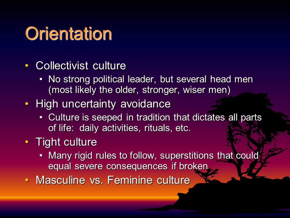 Orientation Collectivist cultureCollectivist culture No strong political leader, but several head men (most likely the older, stronger, wiser men)No strong political leader, but several head men (most likely the older, stronger, wiser men) High uncertainty avoidanceHigh uncertainty avoidance Culture is seeped in tradition that dictates all parts of life: daily activities, rituals, etc.Culture is seeped in tradition that dictates all parts of life: daily activities, rituals, etc.