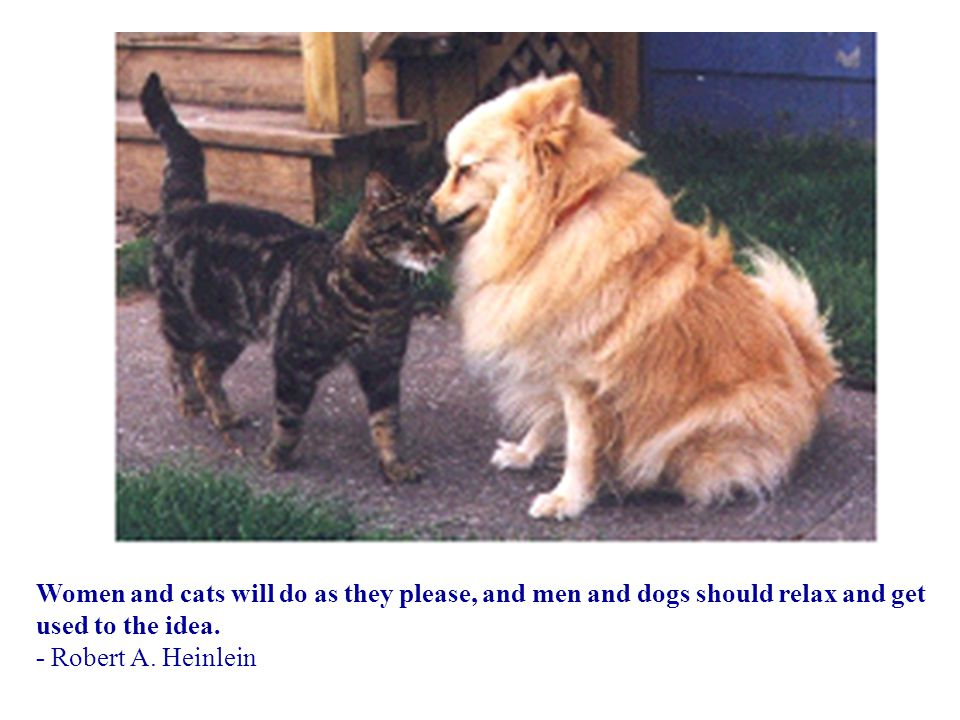 Women and cats will do as they please, and men and dogs should relax and get used to the idea. - Robert A. Heinlein