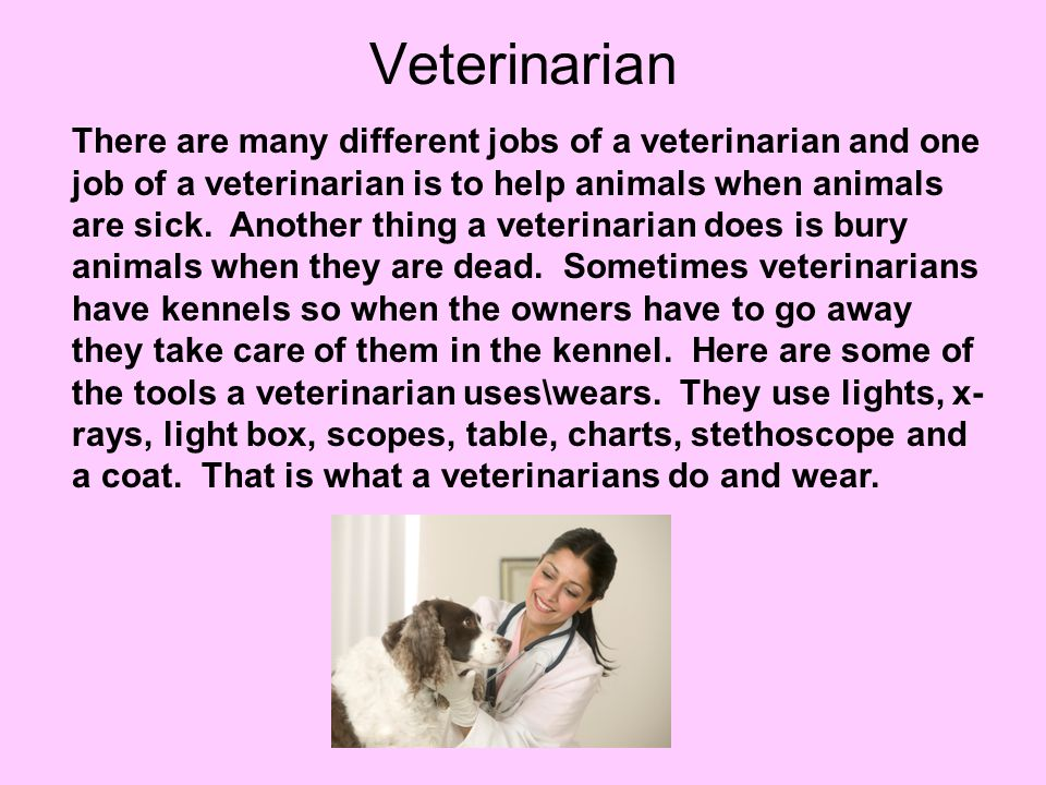 Veterinarian There are many different jobs of a veterinarian and one job of a veterinarian is to help animals when animals are sick. Another thing a v