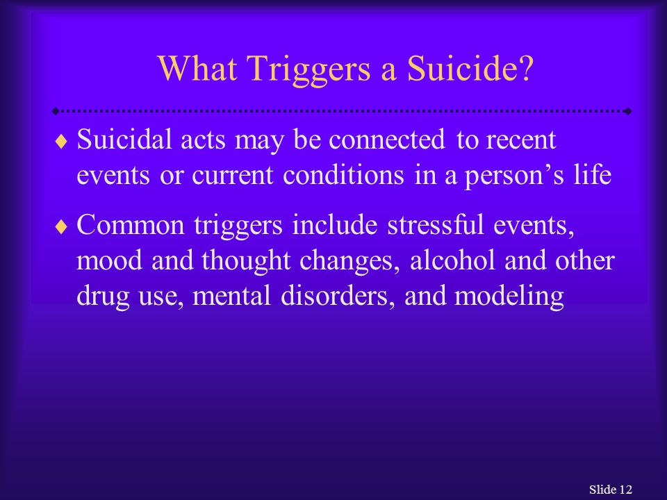 Slide 12 What Triggers a Suicide.