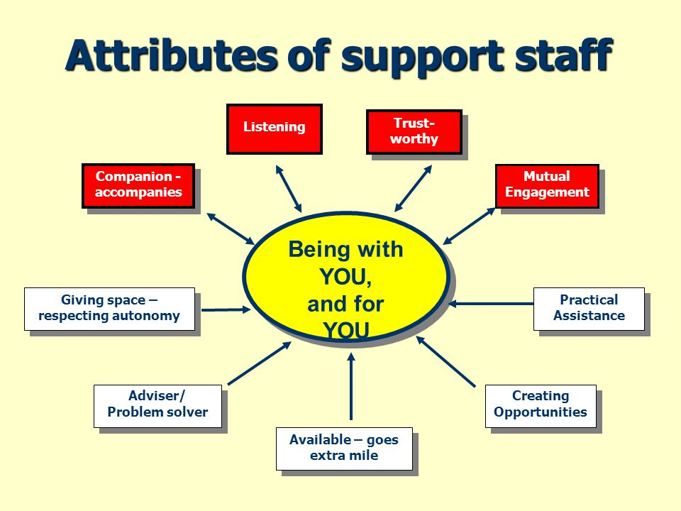 Attributes of support staff Being with YOU, and for YOU Being with YOU, and for YOU Listening Trust- worthy Mutual Engagement Creating Opportunities Creating Opportunities Available – goes extra mile Practical Assistance Adviser/ Problem solver Adviser/ Problem solver Giving space – respecting autonomy Companion - accompanies