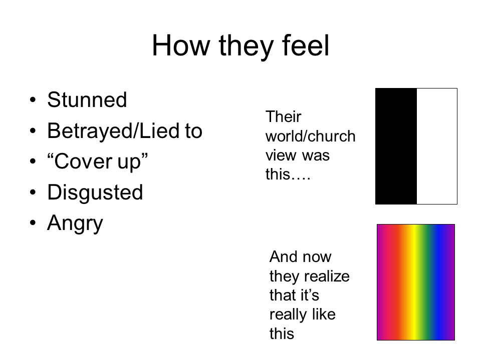 How they feel Stunned Betrayed/Lied to Cover up Disgusted Angry Their world/church view was this….