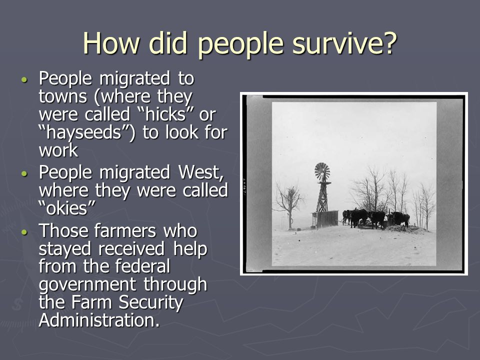 """How did people survive? """"Where would we be without somewhere to live? Without some work to do? Without something to eat?"""" (Hesse 22)"""